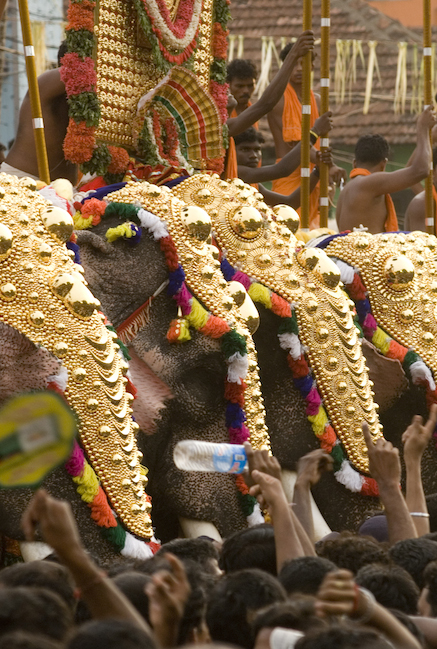 Thrissur Pooram is a magnificent festival of elephants