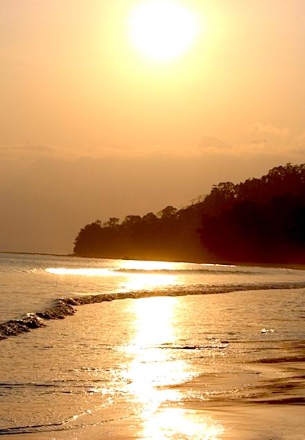 Varkala Beach is one of the best beaches in Kerala